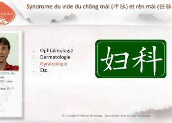 sionneau_cours_en_ligne_medecine_chinoise