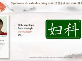 Sionneau cours en ligne medecine chinoise-2