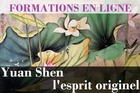 yuan_shen__sionneau