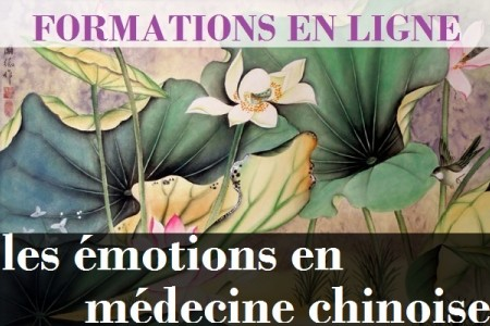 emotions_-_sionneau