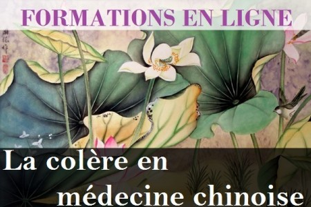 colere_en_medecine_chinoise_sionneau-com