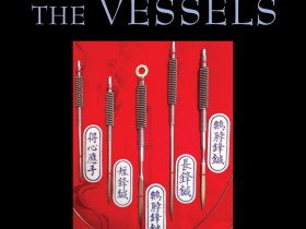 mccann_pricking-the-vessels