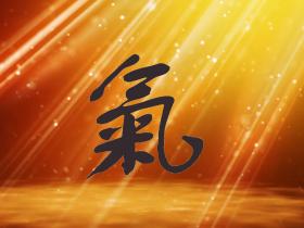 Qi - online - sionneau