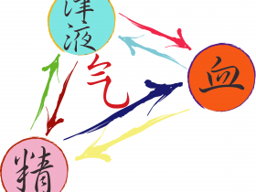 Relations qi sang liquides jing sionneau online
