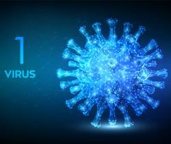 Virus-p1-2
