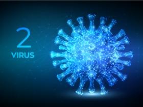 Virus-p2