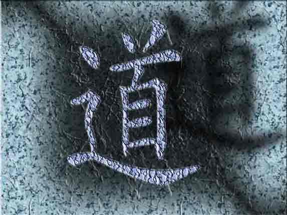 sionneau logo